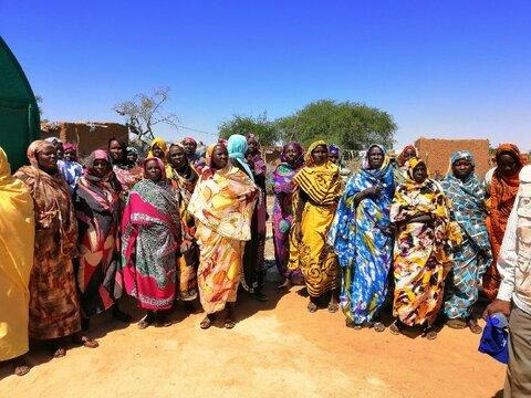 スーダンで土を使わず植物を栽培