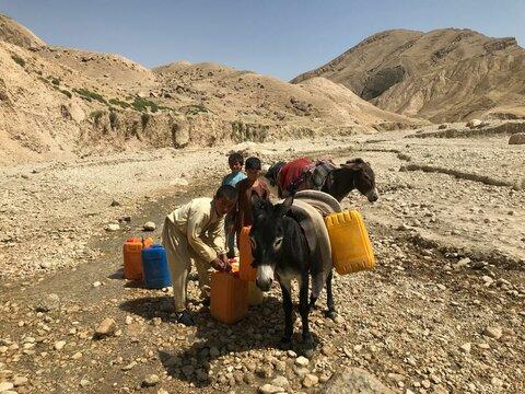 飢餓に苦しむアフガニスタン:十分な食料を確保できている家庭はわずか5%。