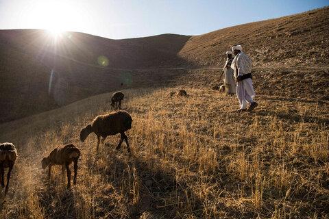 アフガニスタン : 国連WFPは活動を続けます ― 飢えに対する要塞のように