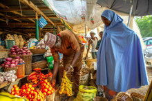 食料価格の高騰と紛争の影響で、西アフリカの飢餓が3割拡大