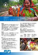 現金・電子マネー・食糧引換券を使った食糧支援 (April 2016)